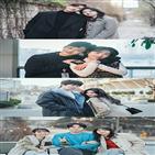 도시남녀,로맨스,사랑법,이야기,포인트,사랑,다른,배우,공감,관전