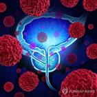 전립선암,호르몬,남성,그룹,환자,치료