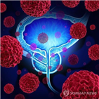 호르몬,남성,전립선암,승인,그룹,환자