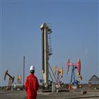 중국,에너지,제한,관련,투자,석유,백서