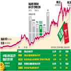 테슬라,주가,투자,펀드,미국,태양광,세계,기업,올해,종목