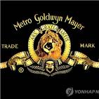 매각,MGM,콘텐츠,보유