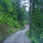 임도,산림청,산림사업,임도밀도,전국임도기본계획,개설,계획,제5,확대