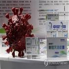 백신,중국,출시