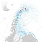 빙산,얼음,두께,연구진,바다