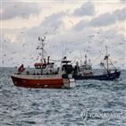 영국,어선,어획량,합의,어업,수역
