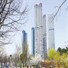 성수동,서울숲,입주,전용,한강,전세,전셋값