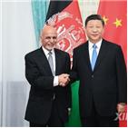중국,체포,아프간,중국인