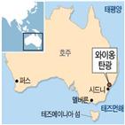 매각,광산,광물공사,와이,정부,지분,호주,석탄