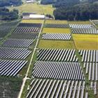 기업,재생에너지,사용,국내,참여,이행