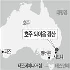 광산,광물공사,정부,와이,매각,호주,지분,유연탄