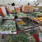 농축산물,할인,제공,행사
