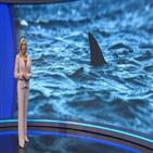 여성,상어,공격