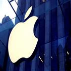 애플,자동차,엔지니어,개발,생산,시스템,테슬라,프로젝트,자율주행,관련