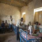 에티오피아,에리트레아군,티그라이,개입,에리트레아