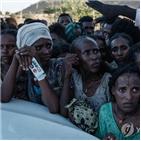 에티오피아,티그라이,사살,군사작전,아머드