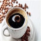 콜레스테롤,커피,소장,여과,흡수,클로로젠,카페인,억제
