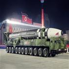 열병식,북한,가능성