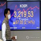 투자자,지난해,코스피,상승,증가,주식,신용대출