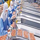 계란,배송,농바이오,시스템,농장,새벽