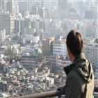 집값,아파트,서울,지난해,최근,실거래가,전망,가격,거래,상투