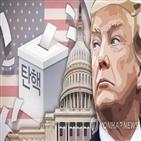 대통령,하원,탄핵,닉슨,상원,탄핵안,혐의,부결,표결,트럼프
