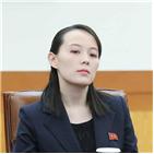 김여정,담화,표현,부부장,남조선