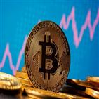 비트코인,투자,변동성,기관