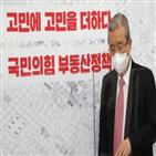 부동산,정책,김종인,국민,정부,위원장,시장,기조