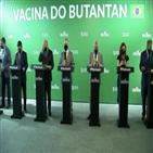 예방효과,백신,임상시험,접종,코로나백,브라질