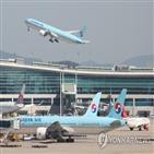 항공사,대한항공,서비스