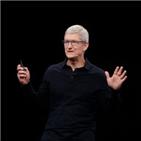 인종차별,애플