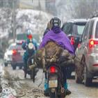 가축,지역,기온,폐사