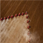 수확량,농산물,브라질