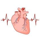 심방세동,위험,심장,매일