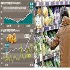 가격,상승,감자,지난해,농산물,시스템,전년,전월,작물