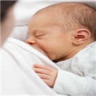 모유,아기,연구,세포,조절,분유