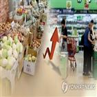 가격,양파,소비자,대형마트,할인,서울,최근,인상