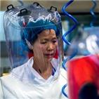 바이러스,중국,가능성,숙주,코로나19,연구원