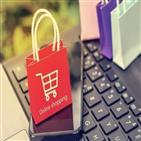 판매자,플랫폼,소비자,거래,사례,구입,제품,피해,사업자,경우