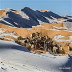 지역,사막,기온