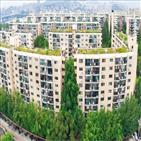 서울,지역,아파트,거래가격,대구,10억,단지,지난해,수도권,진입