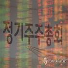 주주총회,온라인,경제개혁연대