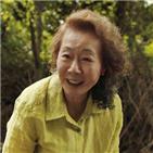 미나리,영화,윤여정,오스카,배우,한국