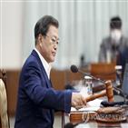 개정안,국무회의,의결