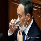선거,오키나와현,자민당,지사,스가,오키나와,지원,후보