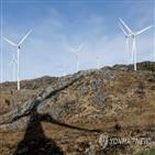 풍력발전,순록,사미,노르웨이,목축업자,원주민