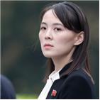 장관,북한,강경화,김여정,교체