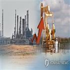가격,원자재,권고안,중국,정부,공기업,자원개발,최근,이후,코로나19