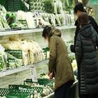 생산자물가,지난달,농산물,사과,가격